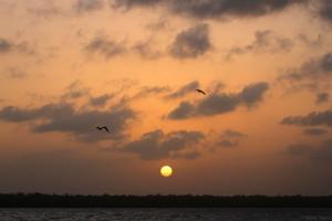 Beautiful sunset (c) Stellar Tsang with the GHFS