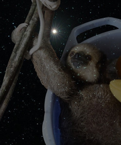 Constellation Sloth